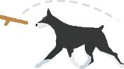 dog-trainers-iocn