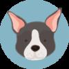 dog-training-classes-1