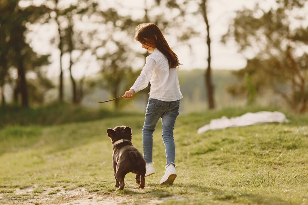 about dog training
